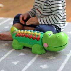 Aligator Edukator